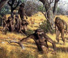 10 Jenis-Jenis Manusia Purba Di Indonesia dan Penjelasannya