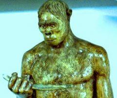 jenis manusia purba Pitecanthropus Dubuis