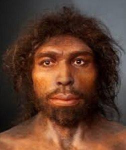 Homo-rhodesiensis